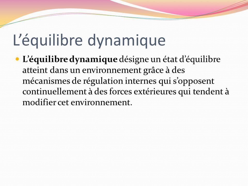 Léquilibre dynamique Léquilibre dynamique désigne un état déquilibre atteint dans un environnement grâce à des mécanismes de régulation internes qui s