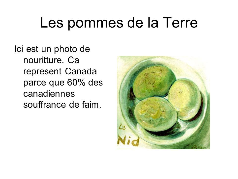 Les pommes de la Terre Ici est un photo de nouritture. Ca represent Canada parce que 60% des canadiennes souffrance de faim.
