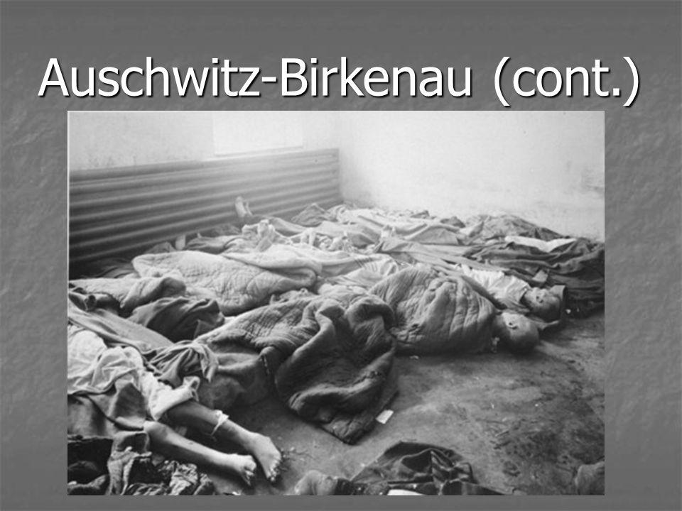 Auschwitz-Birkenau (cont.)