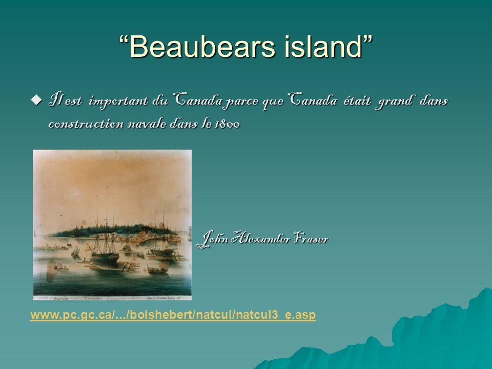 Beaubears island Il est important du Canada parce que Canada était grand dans construction navale dans le 1800 John Alexander Fraser Il est important du Canada parce que Canada était grand dans construction navale dans le 1800 John Alexander Fraser www.pc.gc.ca/.../boishebert/natcul/natcul3_e.asp