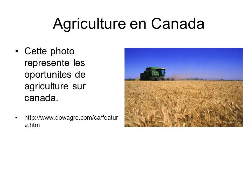 Agriculture en Canada Cette photo represente les oportunites de agriculture sur canada.