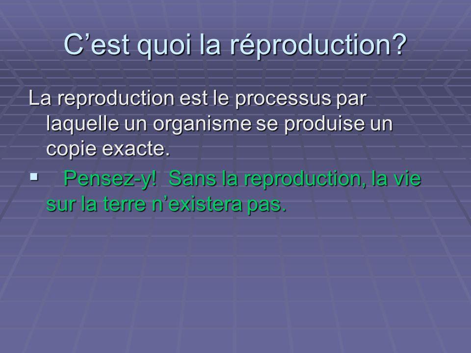 Cest quoi la réproduction? La reproduction est le processus par laquelle un organisme se produise un copie exacte. Pensez-y! Sans la reproduction, la
