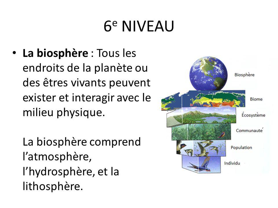 6 e NIVEAU La biosphère : Tous les endroits de la planète ou des êtres vivants peuvent exister et interagir avec le milieu physique. La biosphère comp