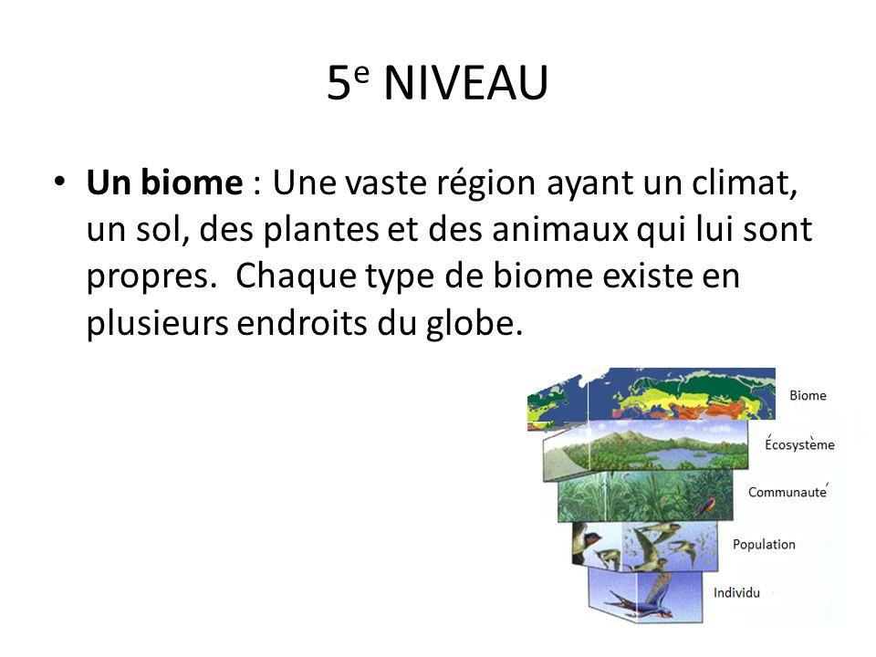 5 e NIVEAU Un biome : Une vaste région ayant un climat, un sol, des plantes et des animaux qui lui sont propres. Chaque type de biome existe en plusie