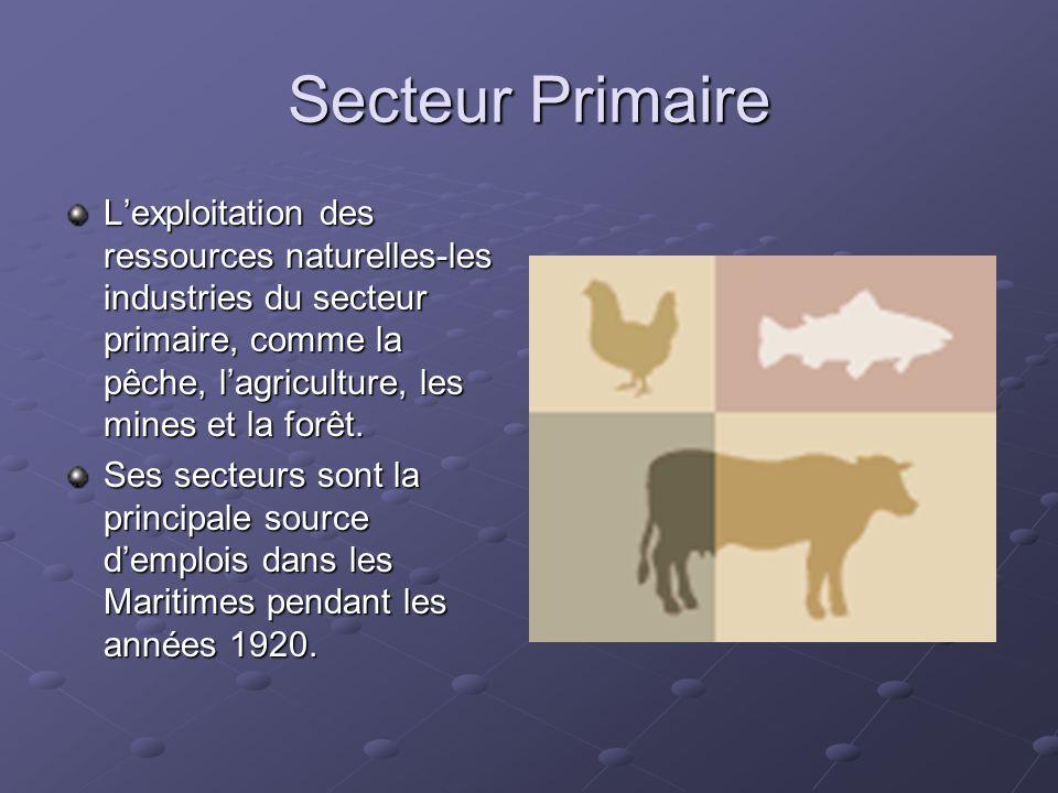 Secteur Primaire Lexploitation des ressources naturelles-les industries du secteur primaire, comme la pêche, lagriculture, les mines et la forêt. Ses