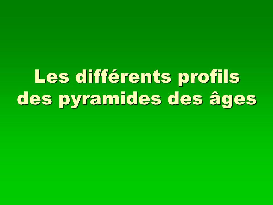 Les différents profils des pyramides des âges