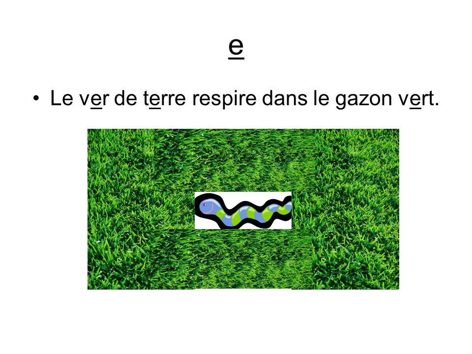 e Le ver de terre respire dans le gazon vert.