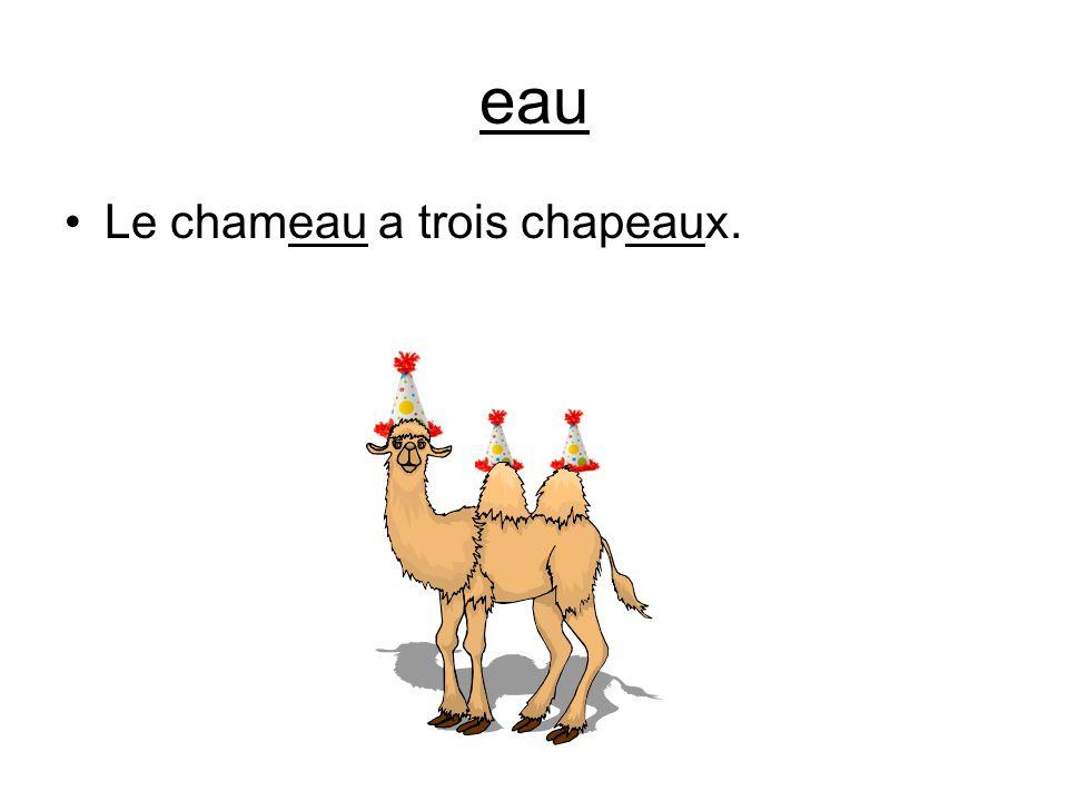 eau Le chameau a trois chapeaux.