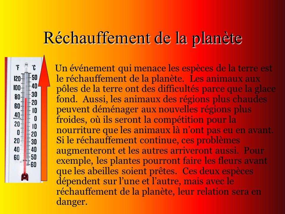 Réchauffement de la planète Un événement qui menace les espèces de la terre est le réchauffement de la planète. Les animaux aux pôles de la terre ont