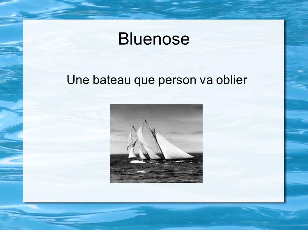 Bluenose Une bateau que person va oblier