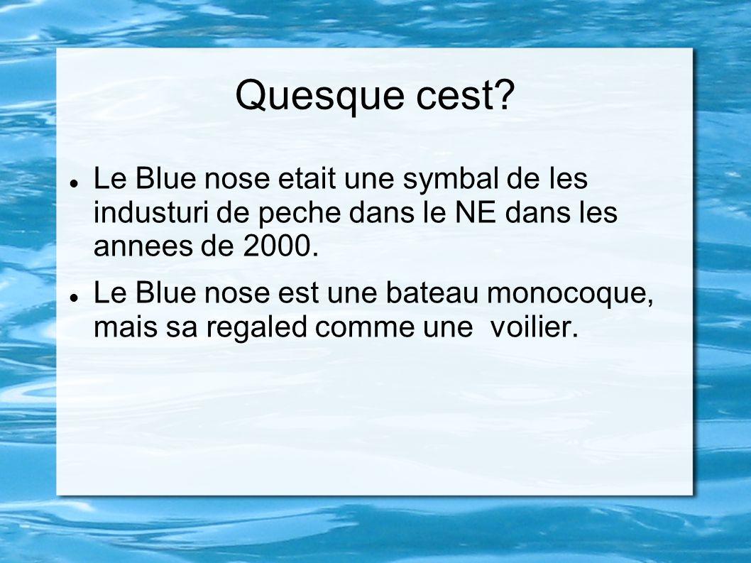 Quesque cest? Le Blue nose etait une symbal de les industuri de peche dans le NE dans les annees de 2000. Le Blue nose est une bateau monocoque, mais