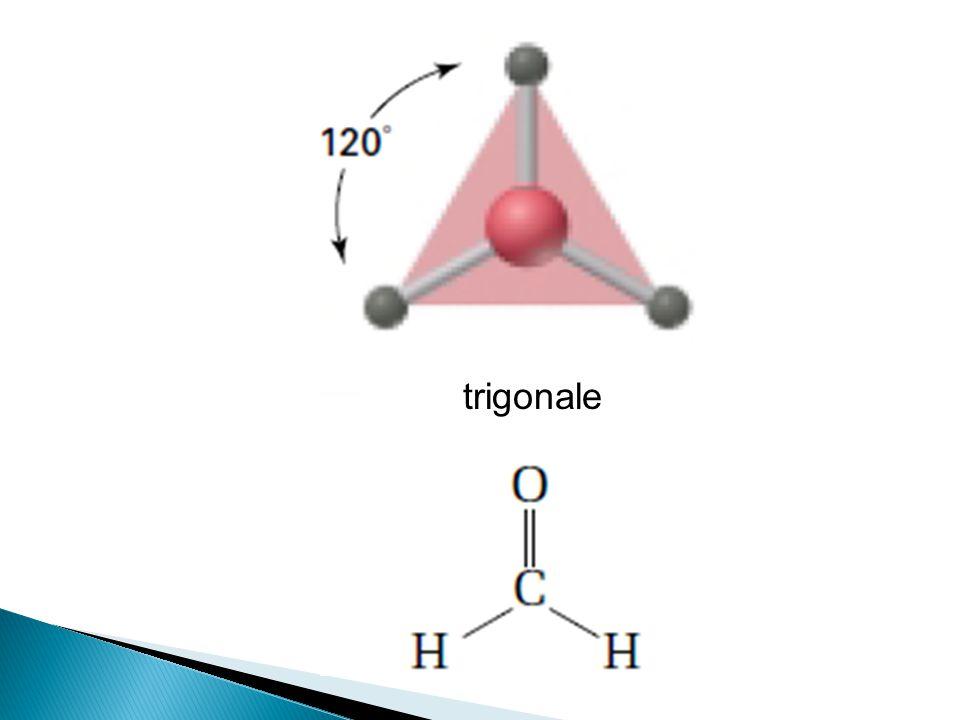 trigonale