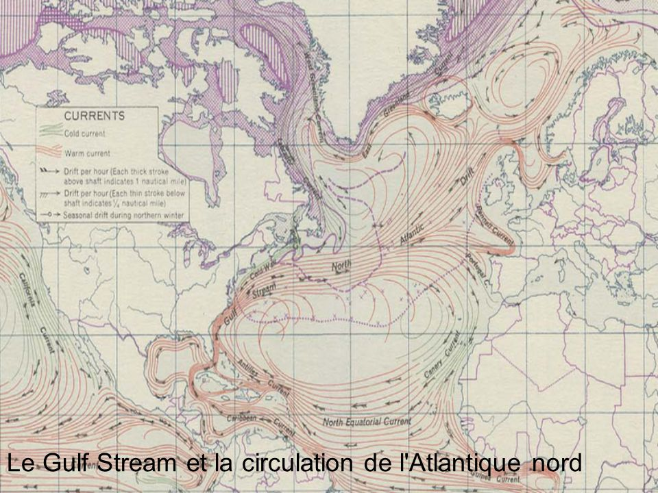 Le Gulf Stream et la circulation de l Atlantique nord