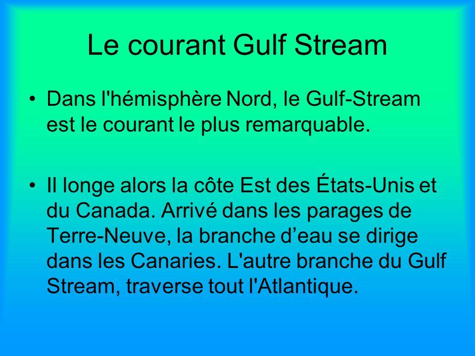 Le courant Gulf Stream Dans l'hémisphère Nord, le Gulf-Stream est le courant le plus remarquable. Il longe alors la côte Est des États-Unis et du Cana