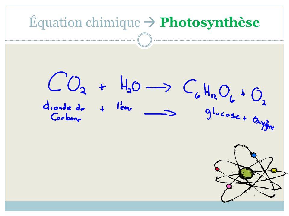 Équation chimique Photosynthèse