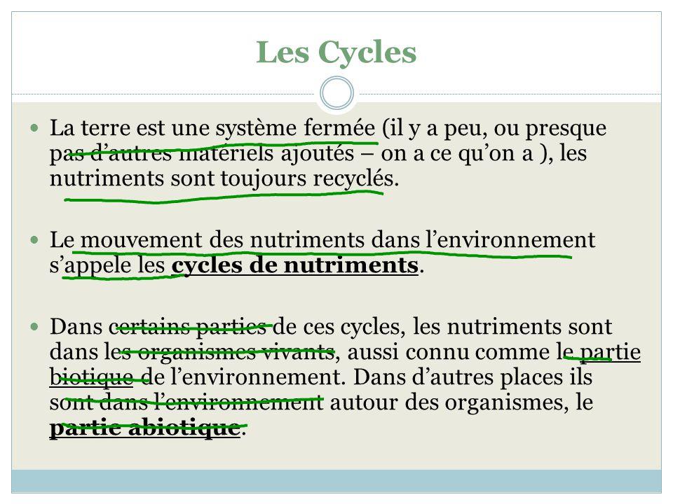 Les Cycles La terre est une système fermée (il y a peu, ou presque pas dautres matériels ajoutés – on a ce quon a ), les nutriments sont toujours recy