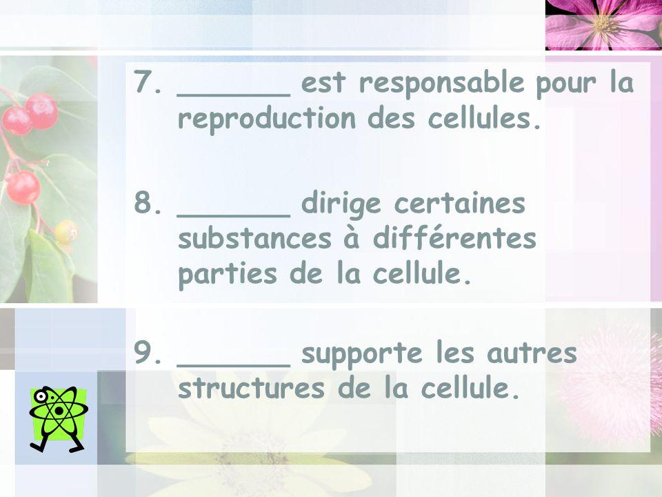 7.______ est responsable pour la reproduction des cellules.