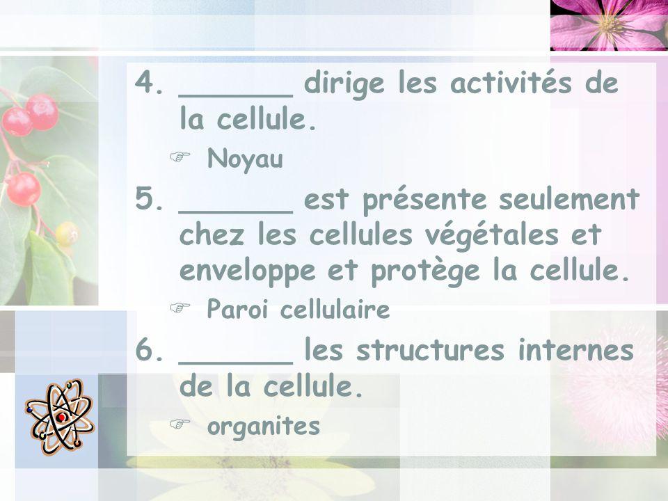 4.______ dirige les activités de la cellule.