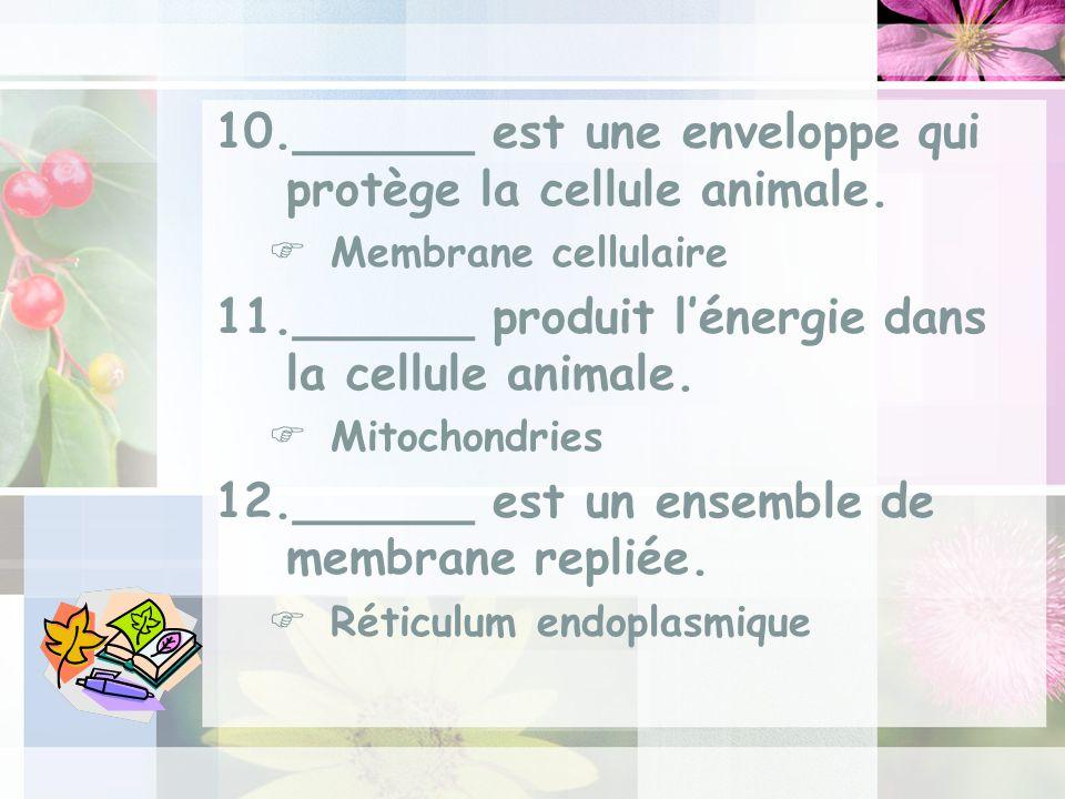 10.______ est une enveloppe qui protège la cellule animale.