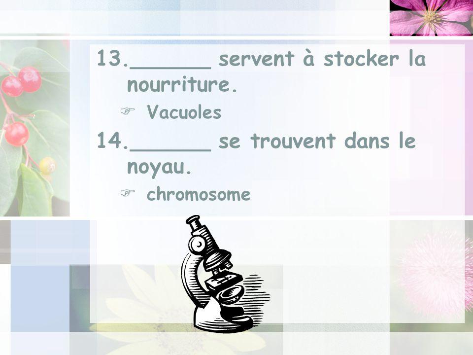 13.______ servent à stocker la nourriture. Vacuoles 14.______ se trouvent dans le noyau. chromosome