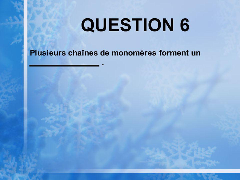QUESTION 6 Plusieurs chaînes de monomères forment un.