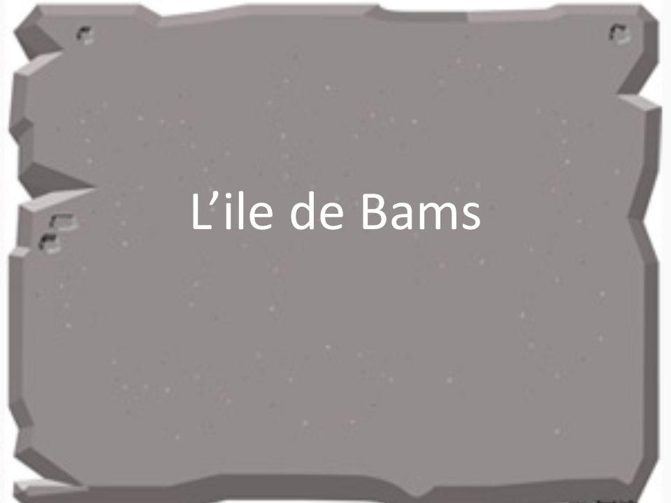 Lile de Bams
