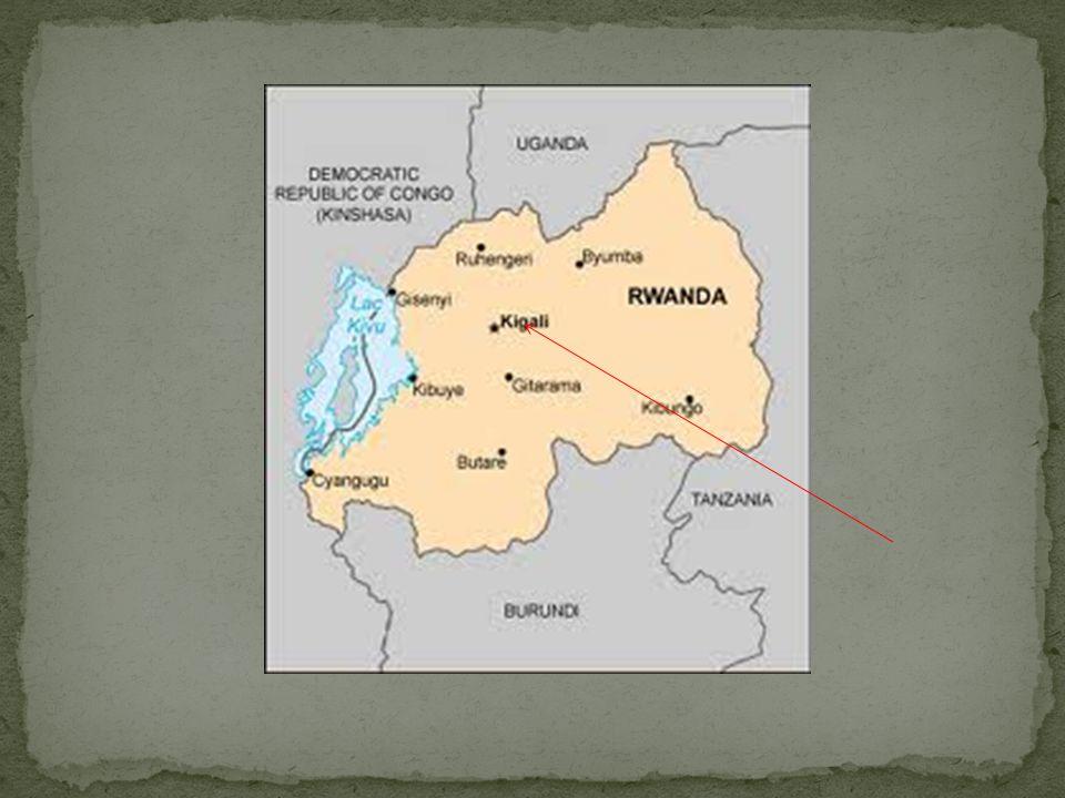 Population du Rwanda 6 000 000 Hutu (85%) Tutsi (14%) Twa (1%) Tutsi sont plus gros and mince Lorigine des Tutsis est en Éthiopie Tutsi a laire plus européen