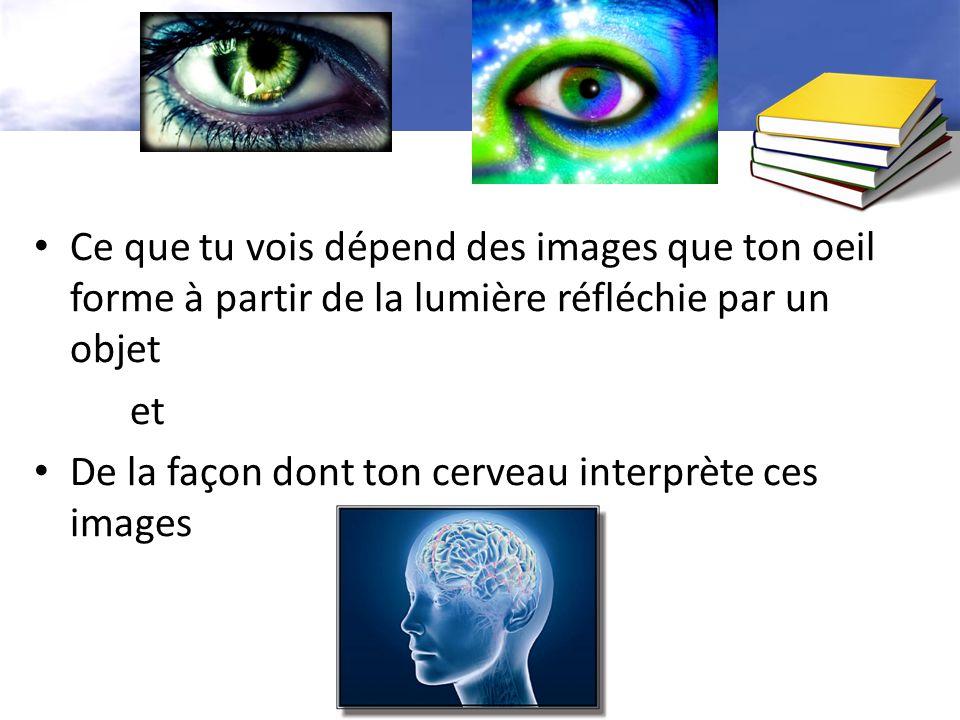 Ce que tu vois dépend des images que ton oeil forme à partir de la lumière réfléchie par un objet et De la façon dont ton cerveau interprète ces images