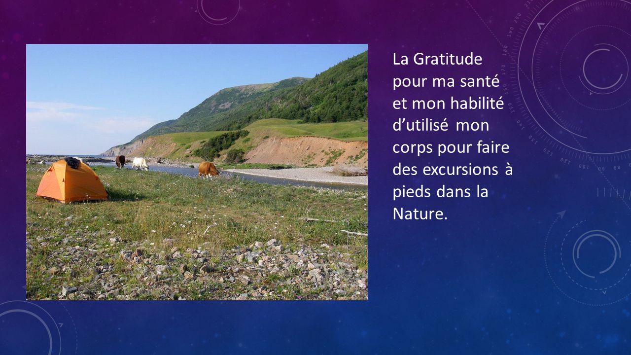 La Gratitude pour ma santé et mon habilité dutilisé mon corps pour faire des excursions à pieds dans la Nature.