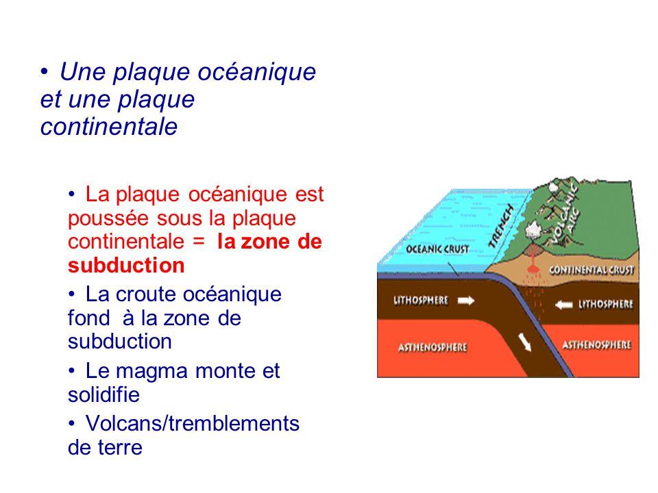 Une plaque océanique et une plaque continentale La plaque océanique est poussée sous la plaque continentale = la zone de subduction La croute océaniqu