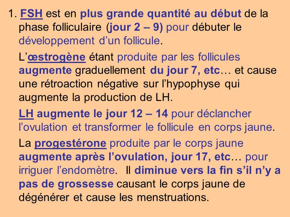 2.La folliculostimuline (FSH) stimule la production du follicule.