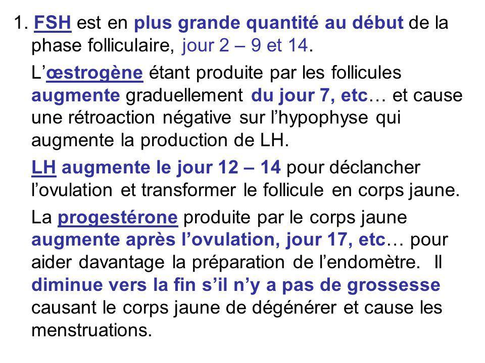 1. FSH est en plus grande quantité au début de la phase folliculaire, jour 2 – 9 et 14. Lœstrogène étant produite par les follicules augmente graduell
