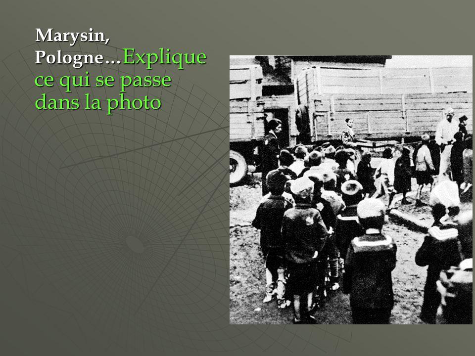 Marysin, Pologne… Explique ce qui se passe dans la photo Marysin, Pologne… Explique ce qui se passe dans la photo