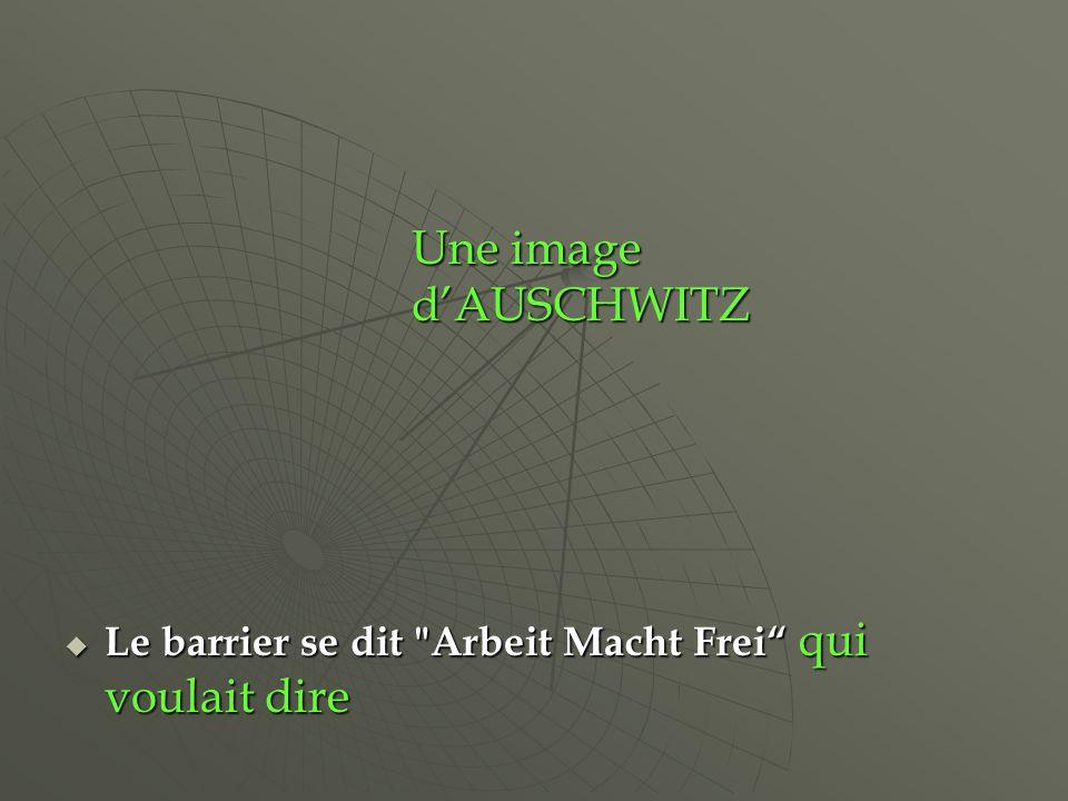 Le barrier se dit Arbeit Macht Frei qui voulait dire Le barrier se dit Arbeit Macht Frei qui voulait dire Une image dAUSCHWITZ