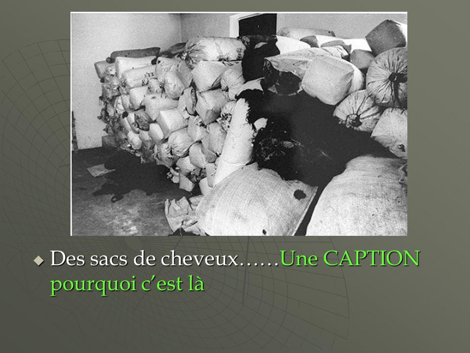 Des sacs de cheveux……Une CAPTION pourquoi cest là Des sacs de cheveux……Une CAPTION pourquoi cest là