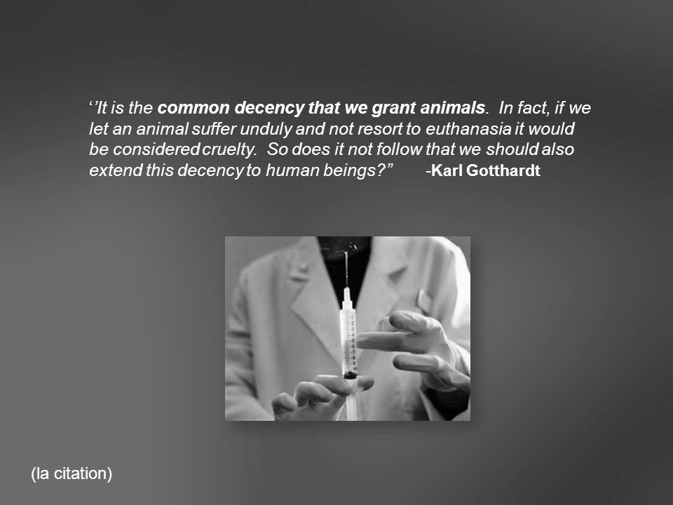 It is the common decency that we grant animals.