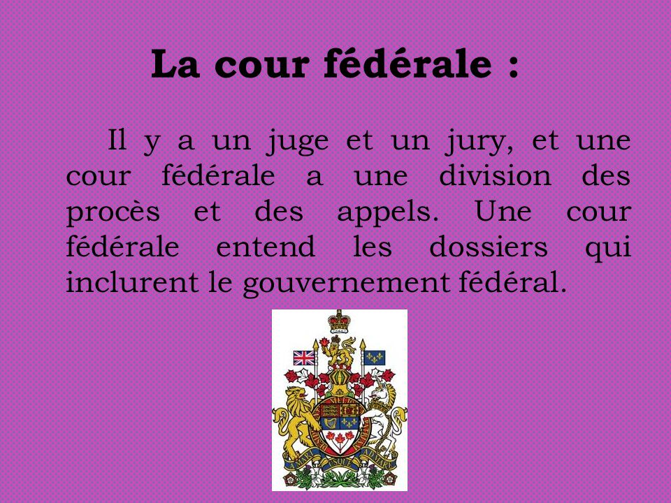 La cour fédérale : Il y a un juge et un jury, et une cour fédérale a une division des procès et des appels. Une cour fédérale entend les dossiers qui