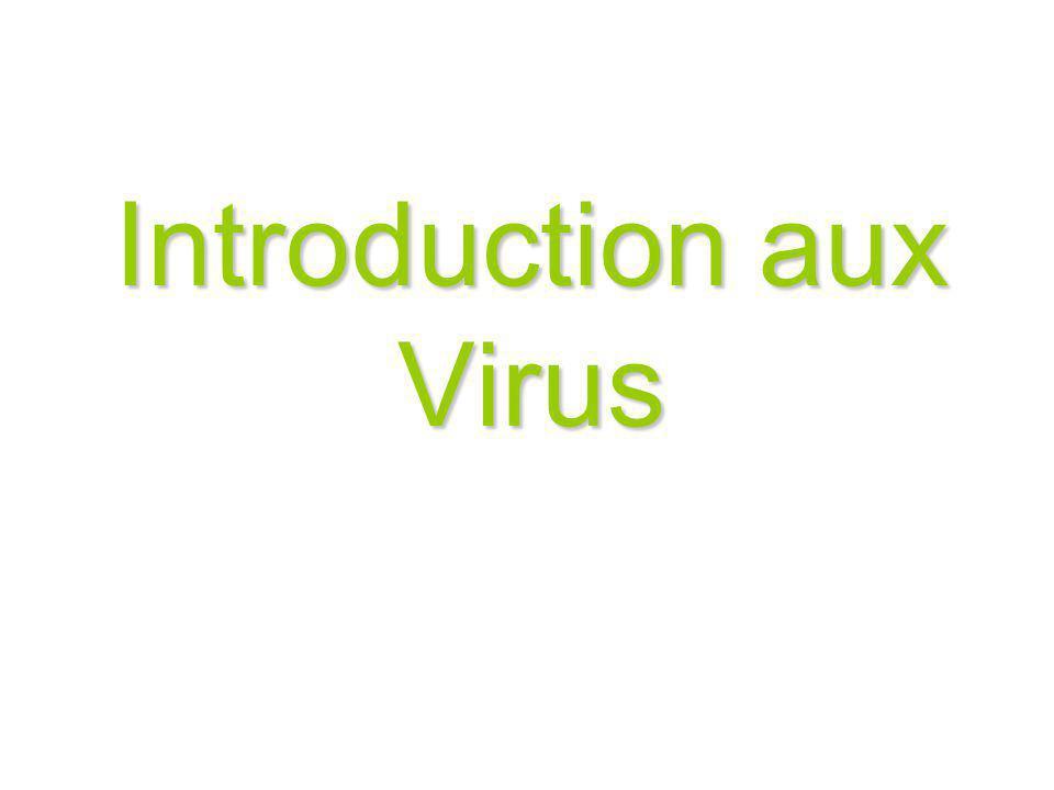 Introduction aux Virus