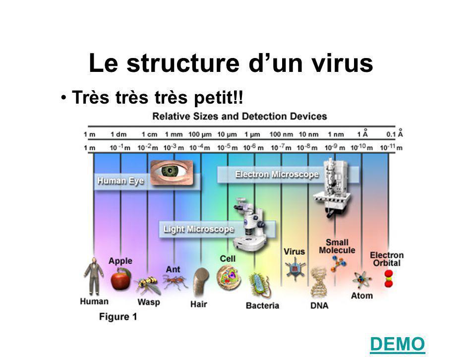Le structure dun virus Très très très petit!! DEMO