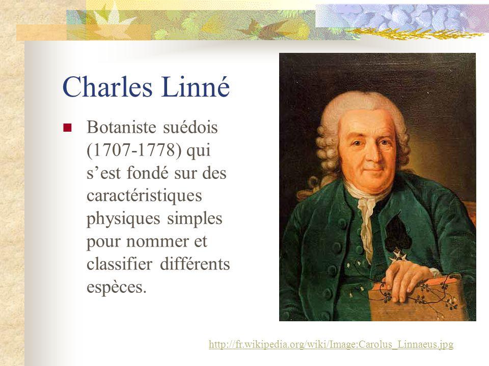 Charles Linné Botaniste suédois (1707-1778) qui sest fondé sur des caractéristiques physiques simples pour nommer et classifier différents espèces.