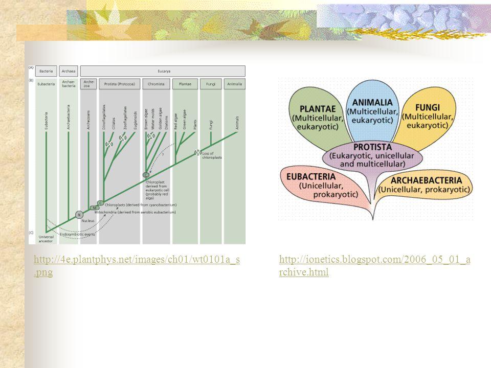 http://4e.plantphys.net/images/ch01/wt0101a_s.png http://ionetics.blogspot.com/2006_05_01_a rchive.html