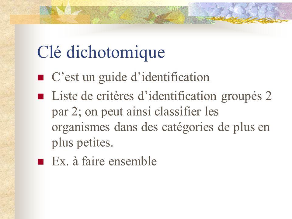 Clé dichotomique Cest un guide didentification Liste de critères didentification groupés 2 par 2; on peut ainsi classifier les organismes dans des catégories de plus en plus petites.