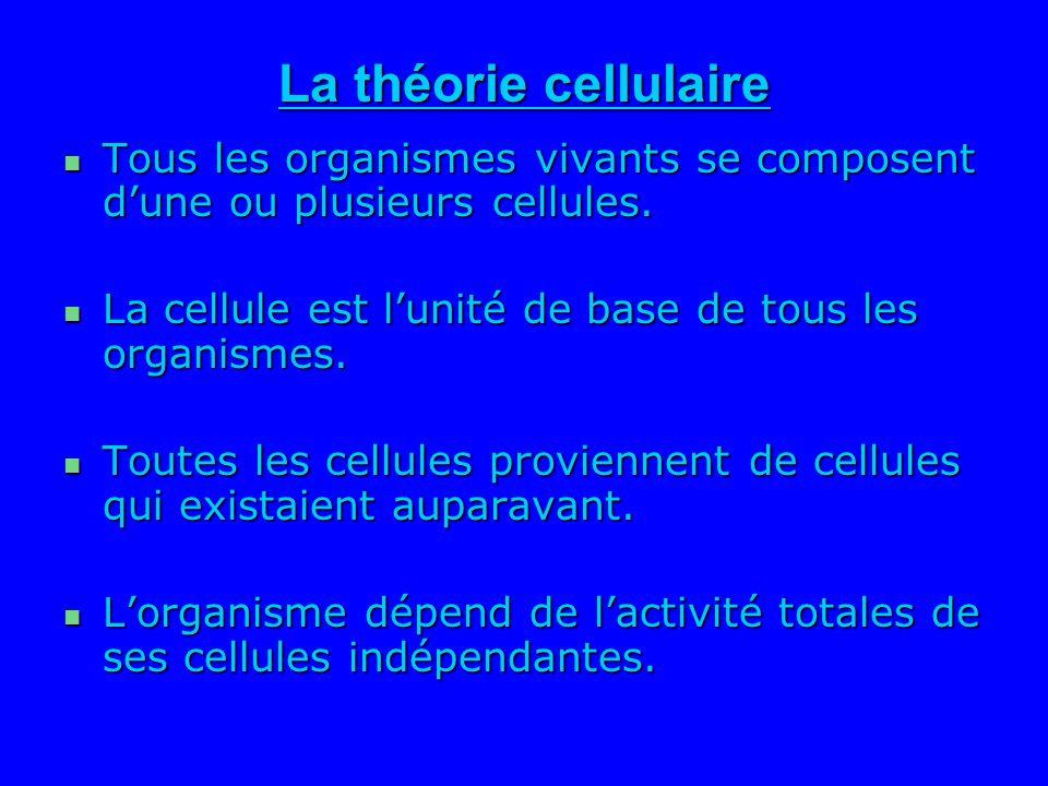 La théorie cellulaire Tous les organismes vivants se composent dune ou plusieurs cellules. Tous les organismes vivants se composent dune ou plusieurs