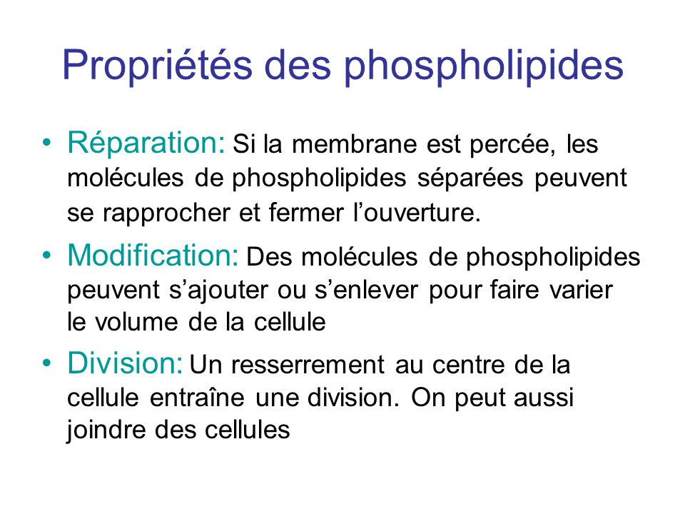 Propriétés des phospholipides Réparation: Si la membrane est percée, les molécules de phospholipides séparées peuvent se rapprocher et fermer louverture.