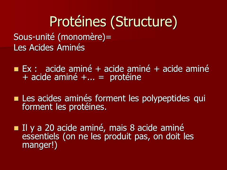 Protéines (Structure) Sous-unité (monomère)= Les Acides Aminés Ex : acide aminé + acide aminé + acide aminé + acide aminé +... = protéine Ex : acide a