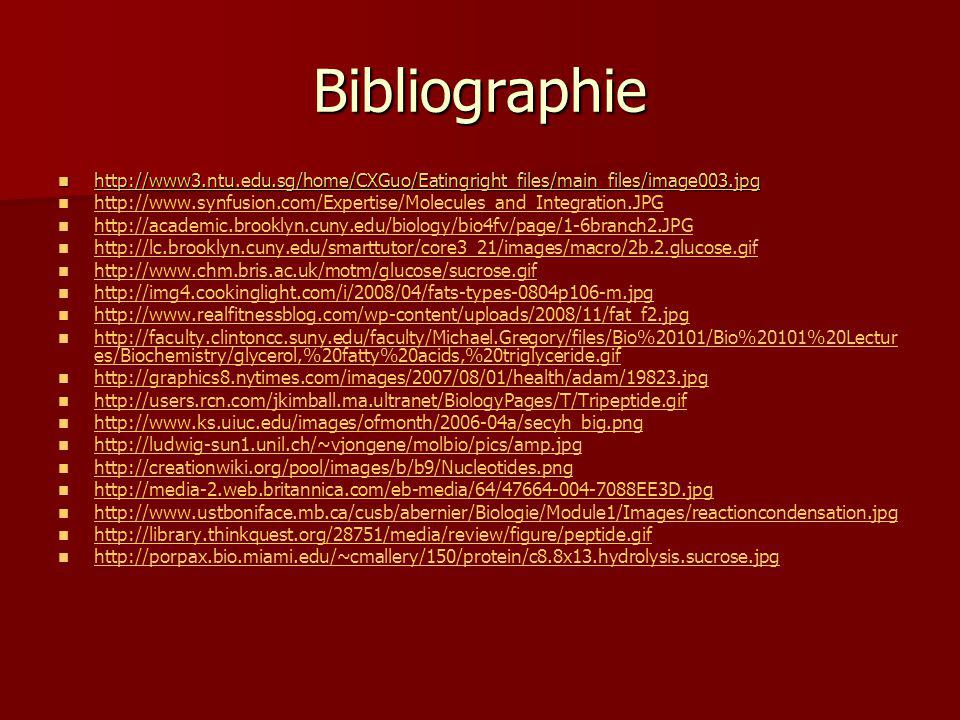 Bibliographie http://www3.ntu.edu.sg/home/CXGuo/Eatingright_files/main_files/image003.jpg http://www3.ntu.edu.sg/home/CXGuo/Eatingright_files/main_fil