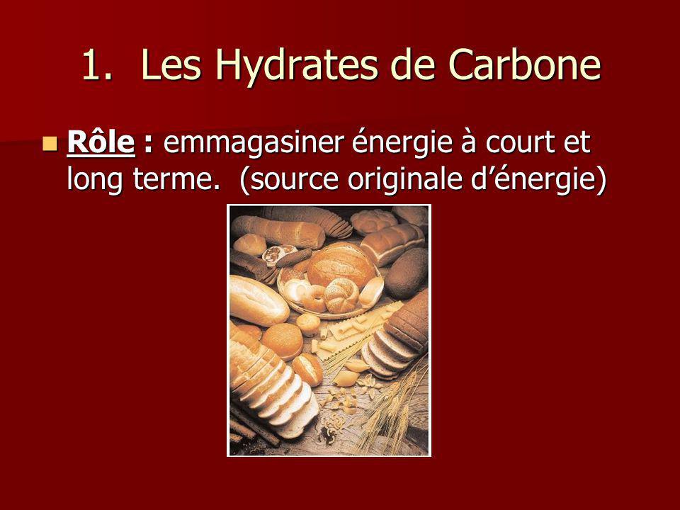 1. Les Hydrates de Carbone Rôle : emmagasiner énergie à court et long terme. (source originale dénergie) Rôle : emmagasiner énergie à court et long te