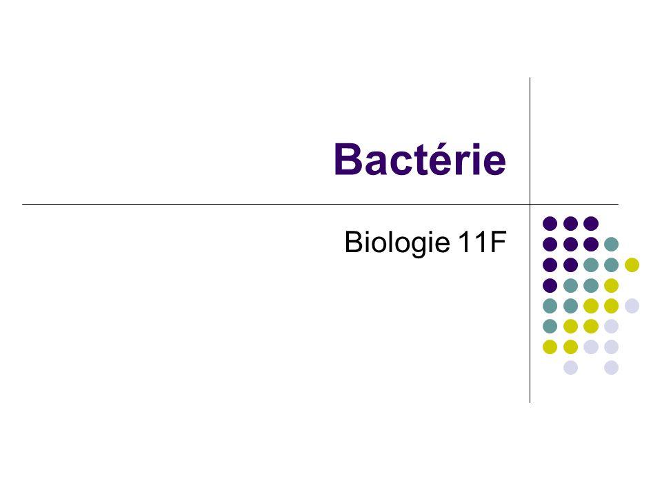 Caractéristiques Générales: Aucune noyau ou organites avec les membranes (procaryote) Paroi cellulaire microscopique / unicellulaire (vivre dans les colonies) Reproduction asexuelle ~ 4000 espèces classifier (estimâtes dêtre 400 000 à 4 million espèces) *Seulement un minorité de bactérie cause les maladies… majorité sont essentielle pour la vie!