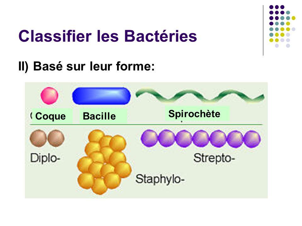 Classifier les Bactéries II) Basé sur leur forme: CoqueBacille Spirochète
