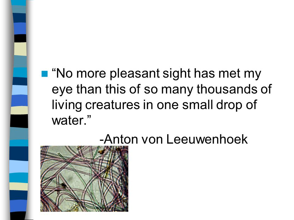 No more pleasant sight has met my eye than this of so many thousands of living creatures in one small drop of water. -Anton von Leeuwenhoek